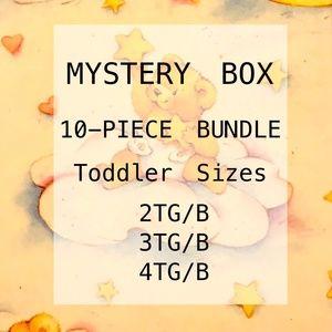 📦⬇️⬇️Toddler 2 3 4 Boy Girl Mystery 10 Piece Box